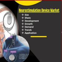 Neurostimulation Device Market Emerging Trends, Share and Overview on Rising Demands and Supply