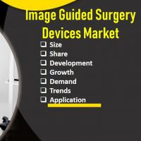 Image Guided Surgery Devices Market  and its Growth Landscape in the Foreseeable Future